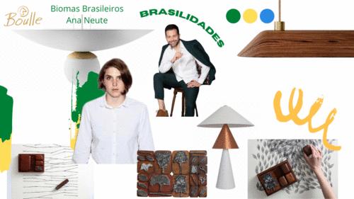 Brasil (re)descoberto EP 03 - Os Biomas brasileiros aos olhos da arte design pela designer Ana Neute